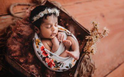 Townsville Newborn Photos